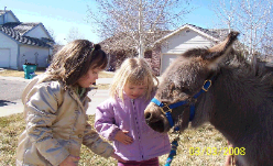Children Standing With a Pony