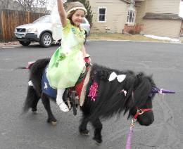 Child on a Pony Ride