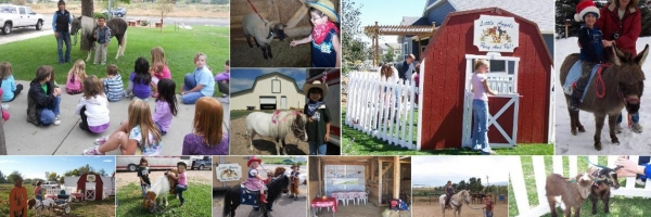 Pony Rides & Petting Zoo for Parties in Fort Collins CO | Little