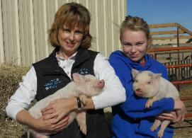 Photo of people holding piglets