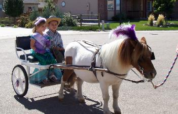Photo of children riding in cart pulled by pony